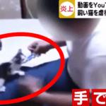YouTube猫虐待動画の岐阜県41歳男性の名前や顔画像チャンネル名が判明?